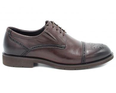 Туфли броги 1-03 - фото
